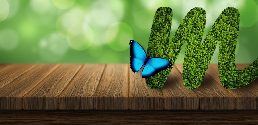 5 základních rad, když rozjíždíte nový byznys